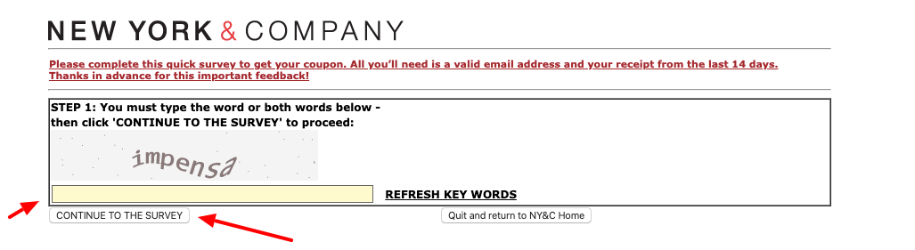 New York and Company Survey